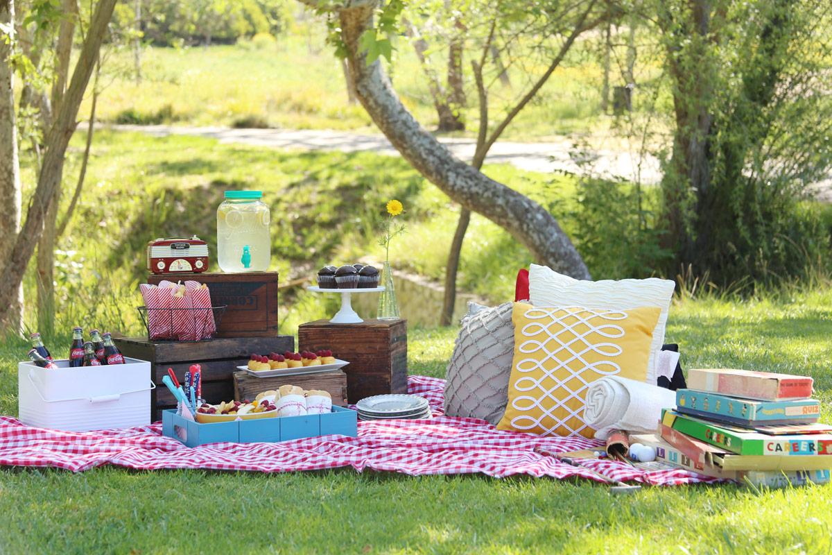 ретро пикник