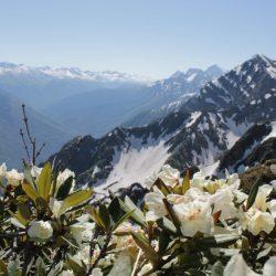 Экскурсии в горнолыжном курорте Альпика-Сервис