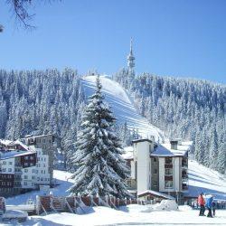 Лидерами зимнего туризма стали Алтай и Камчатка