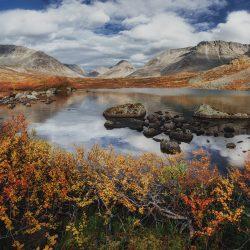 Причины пробуксовки развития туристической отрасли в Мурманской области