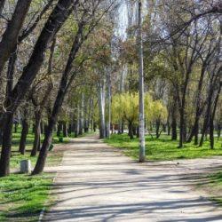 Парки Феодосии