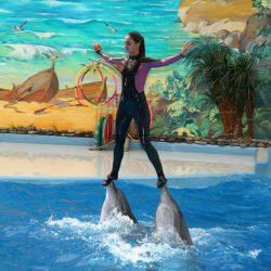 Дельфинарии Сочи