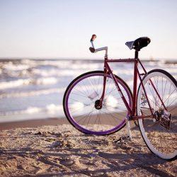 Прокат велосипедов в Геленджике