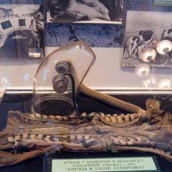 Музеи и галереи Гурзуфа