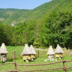 Достопримечательности и экскурсии Криницы