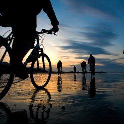 Прокат велосипедов и авто в Керчи