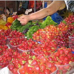 Магазины и рынки Приморского