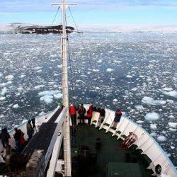 Воркута покажет всем «Доступную Арктику»