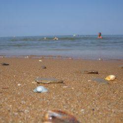 Пляжи Кучугуров