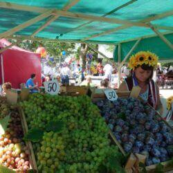 Магазины и рынки Тамани