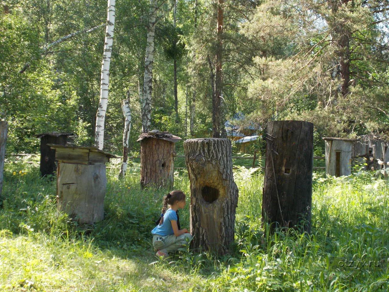 Куда поехать в России на отдых с детьми