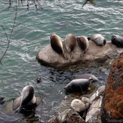 Легенды Байкала — самого большого озера Земли. Часть 3