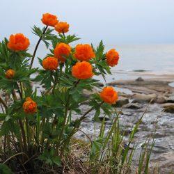 Легенды Байкала — самого большого озера Земли. Часть 2