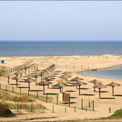 На каких пляжах Калининграда и области можно купаться