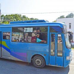 Общественный транспорт в Витязево