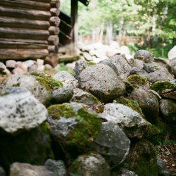 Витославлицы в Великом Новгороде: как жили и работали простые крестьяне?