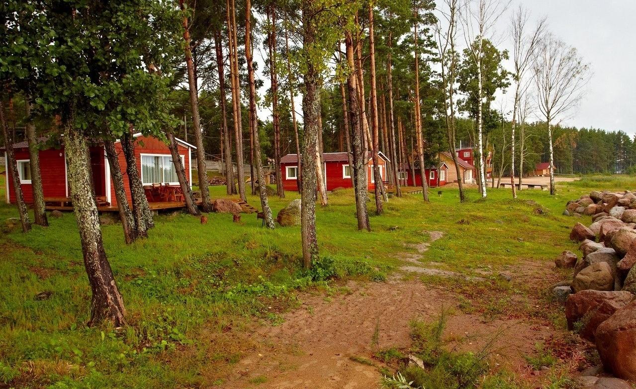 Базы отдыха в Ленобласти, чтобы отдохнуть от городской суеты