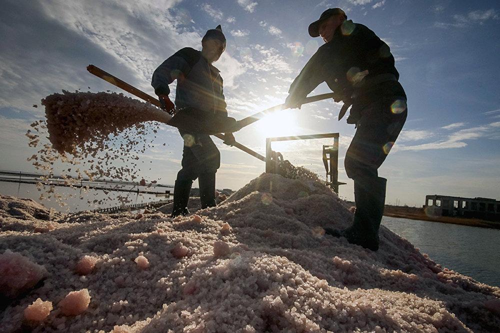 Озеро Сиваш – залежи грязи и россыпь розовой соли под ногами