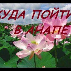 КУДА ПОЙТИ В АНАПЕ / Экскурсии и достопримечательности Анапы