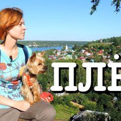 Плёс на Волге — город Левитана, Медведева и кошек