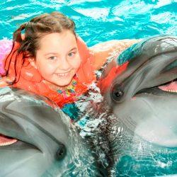 Дельфинарий в Лоо