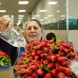 Рынки в Лазаревском