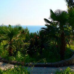 Парки и зеленые зоны в Якорной Щели