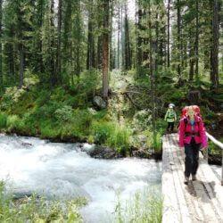 Полезные советы для первого путешествия в Карелию