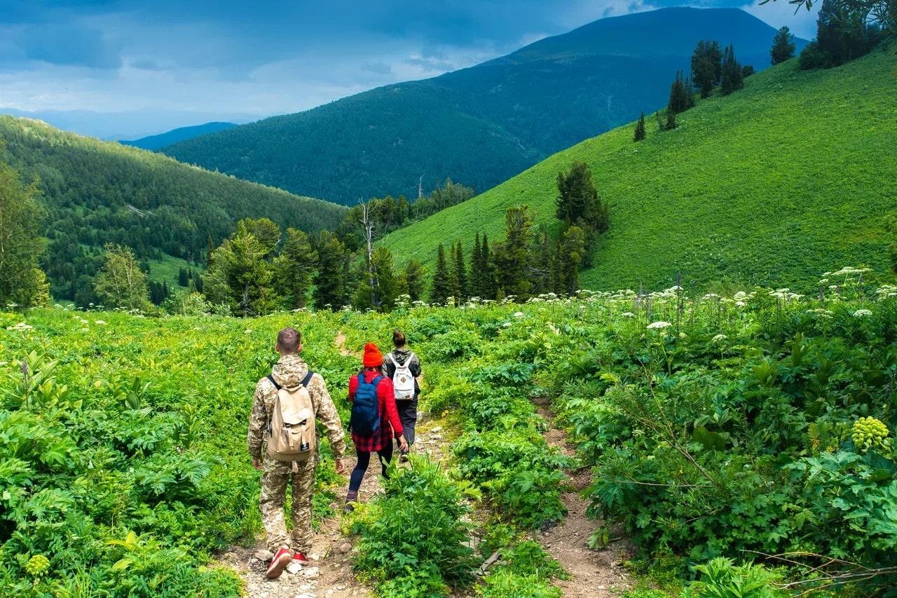 Сельский туризм в России: места для отдыха