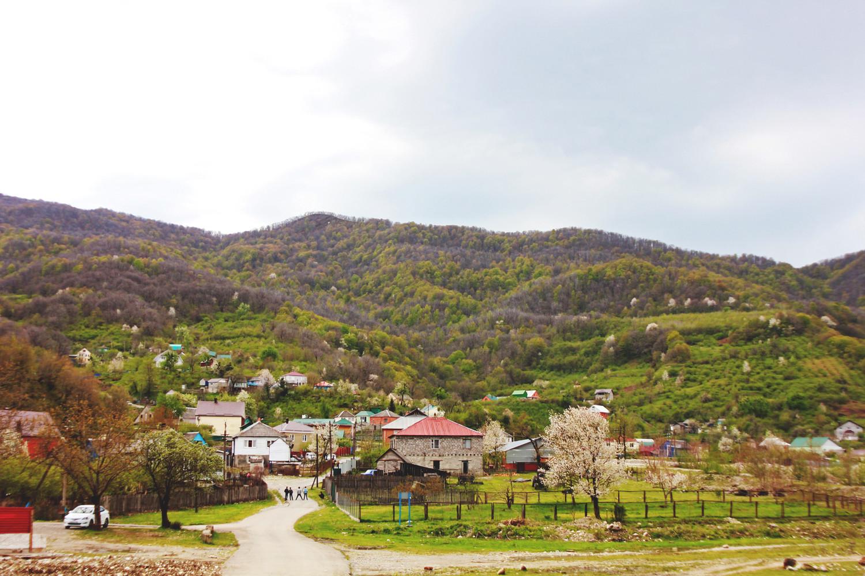 Где отдыхают местные в Сочи: без пафоса и высоких цен